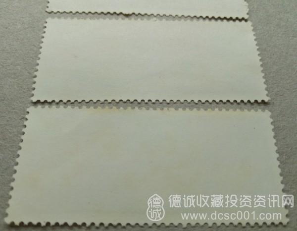 T5-4.jpg